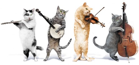 410987-cats-kit-cat-quartet