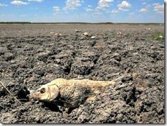 YE Texas Drought