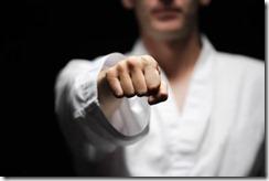 karate-fist