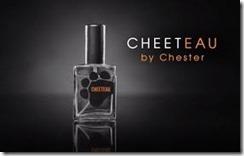 cheetosA1