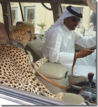 only_in_dubai_10