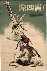 chinasparrow
