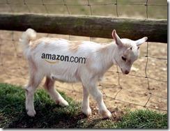 amazon-goats