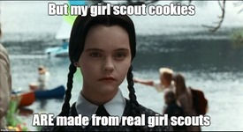 wedgirlscout