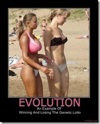 evolution-life-time-girl-summer-beach-bikini-demotivational-poster-1240083599