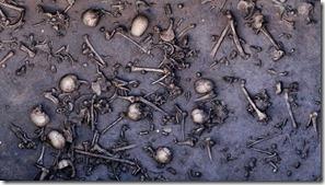 bronzebattelcol