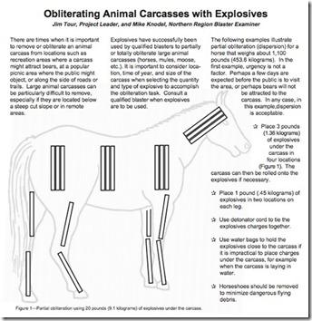 animal-carcass-explosive