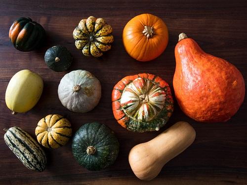 -squash-varieties.jpg
