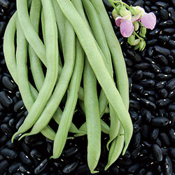 0201-bean-black-valentine.jpg