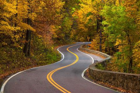 1170552709-winding_road_5.jpg