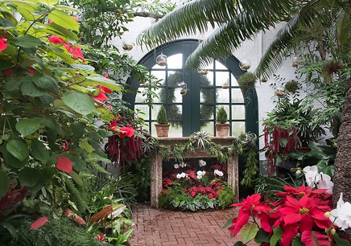 2018-conservatory.jpg