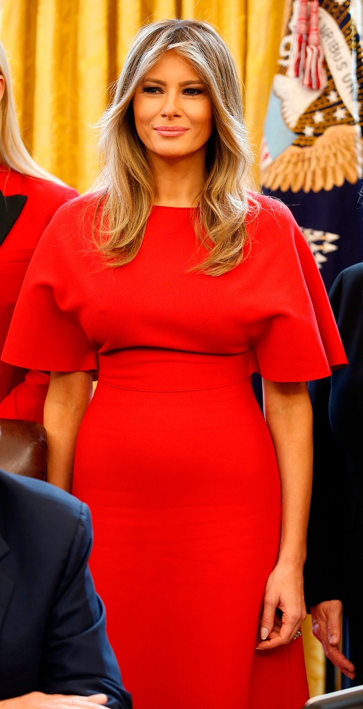 20190921 dress pr0n melania.jpg