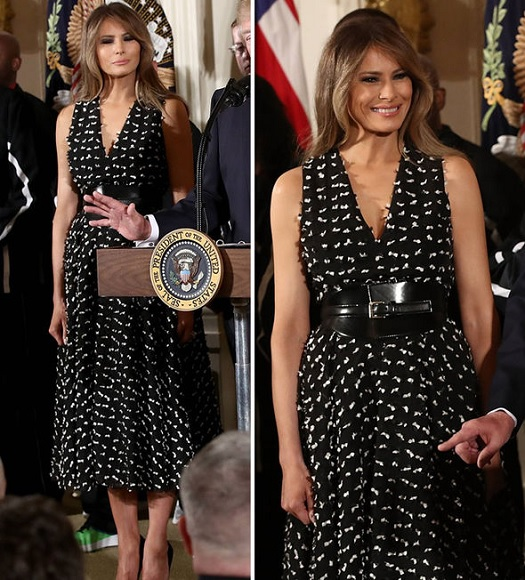 20200627 dress pr0n melania.jpg
