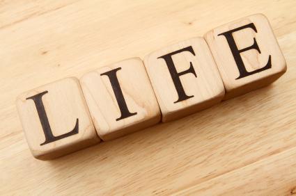 36732111-life.jpg