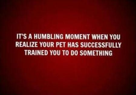 A-humbling-moment.jpg