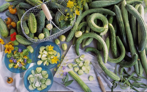 Assorted-Cucumbers.jpg