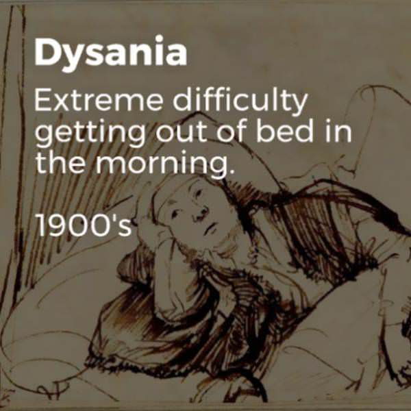 Dysania.jpg