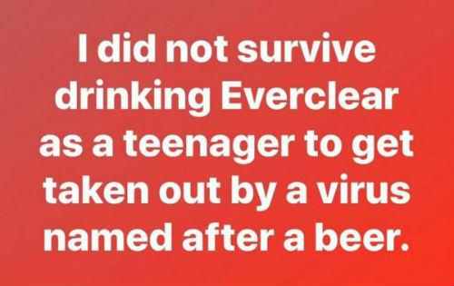 Everclear-surviver-600x378.jpg