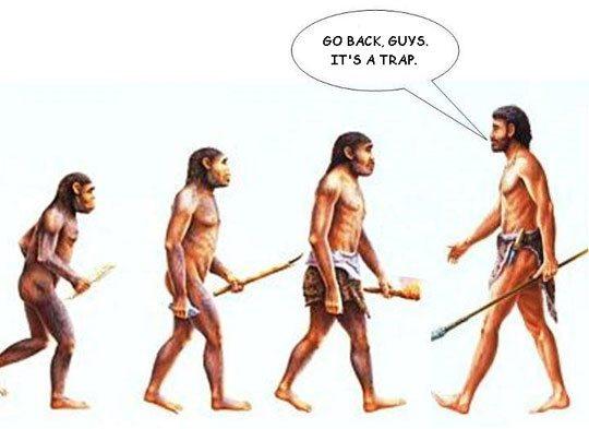 Evolution1.jpg