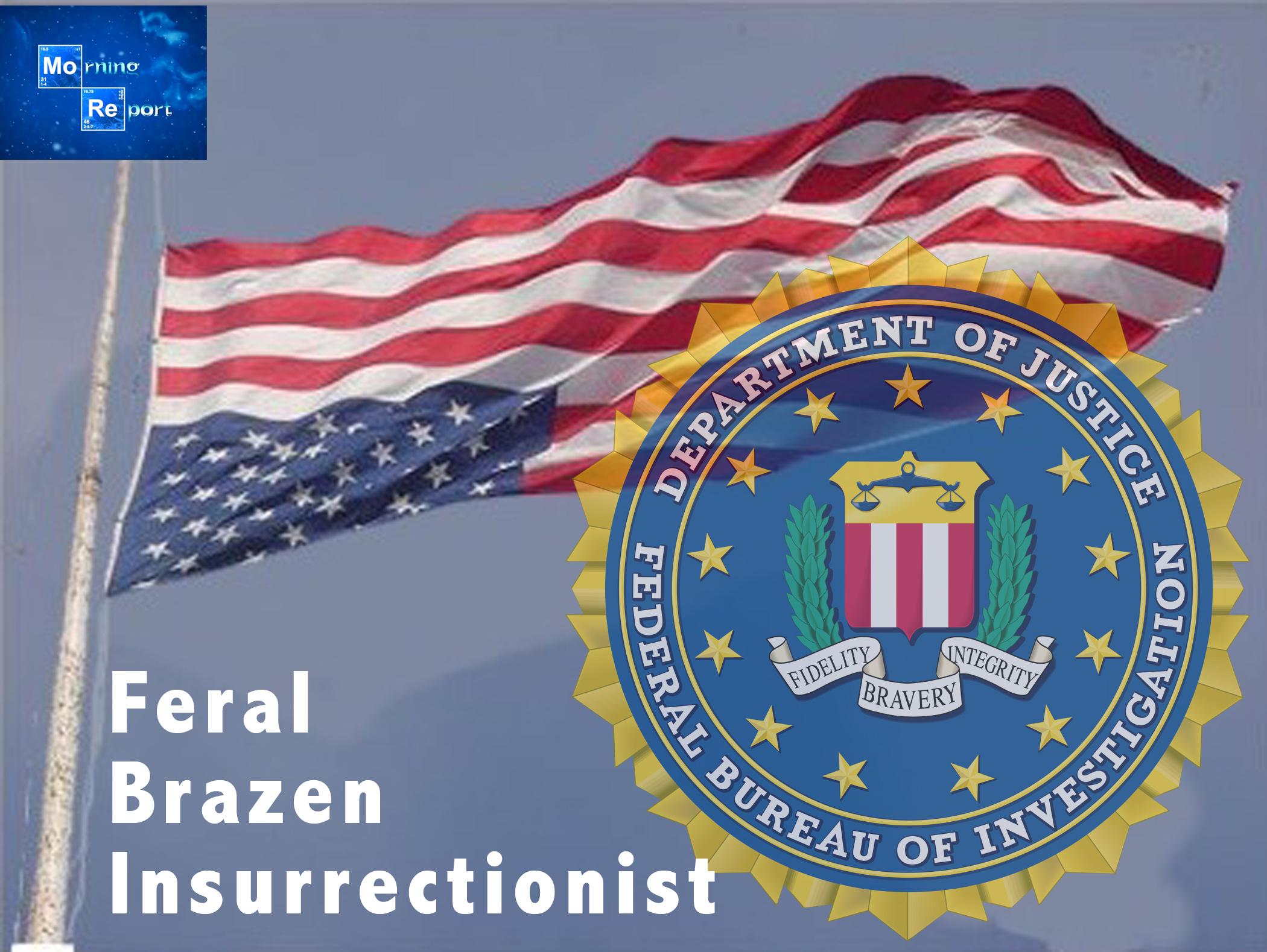FBIflag.jpg