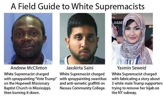 Field Guide to White Supremacists.jpg