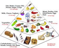 FoodPyramidMain1.png