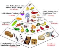 FoodPyramidMain1.png