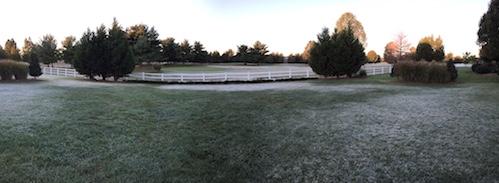 FrostyMorning.JPG