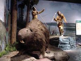 Giant-Beaver.jpg