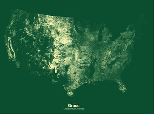 GrassMap.jpeg
