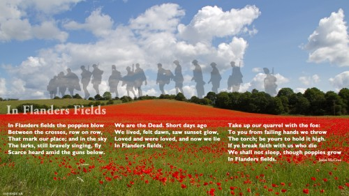 In Flanders Field.jpg