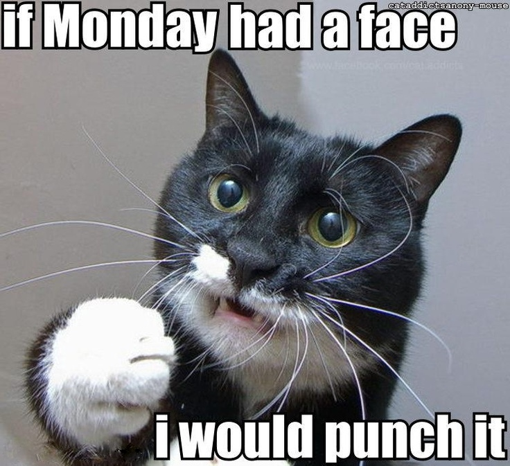 Monday-punch.jpg