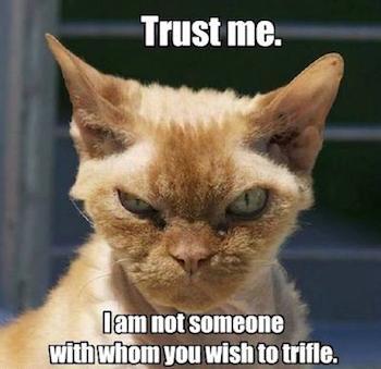 TrustMeCat.jpg