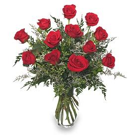 Valentines-Ferns-roses.jpg