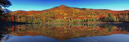 VermontFoliage.jpg