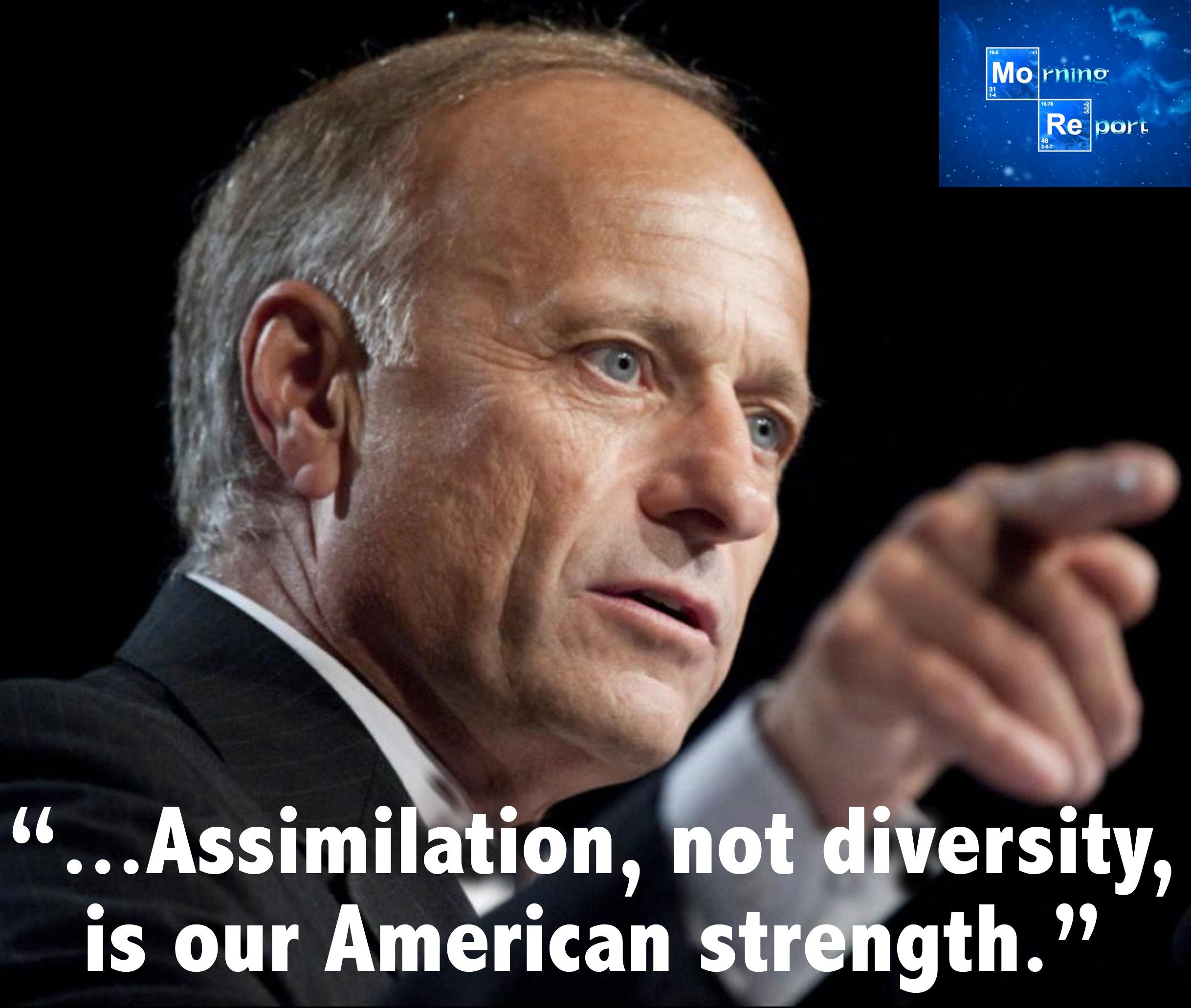 assimilation.jpg