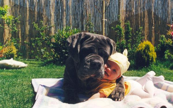 babydog5.jpg