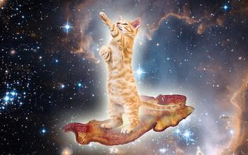 bacon-space-kitty-22180-1278510824-21.jpg