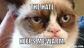 bfr-grumpy-cat-meme-generator-the-hate-keeps-me-warm-b78250.jpg