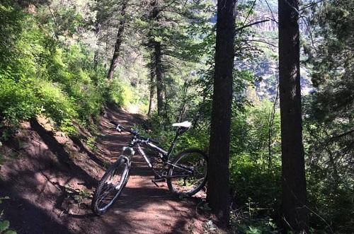 bikecachee.jpg