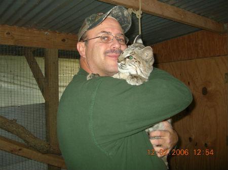 bobcat1unnamed.jpg