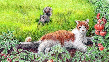 cat-squirrel-garden-illustration-web.jpg