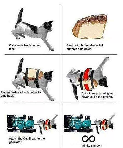 catbreadgenerator.jpg