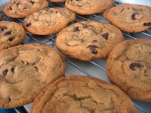 chocochipcookie.JPG
