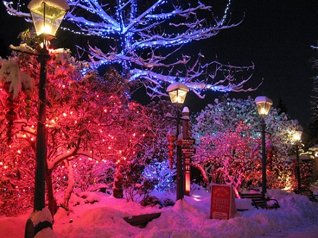 christmas-lights-snow.jpg