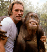 clint-with-orangutan.png