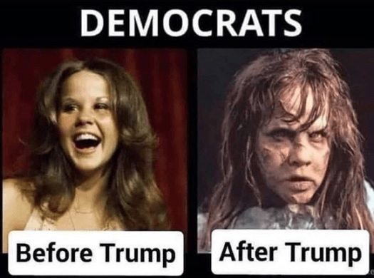 compare and contrast - democrats b4 and after trump.jpg