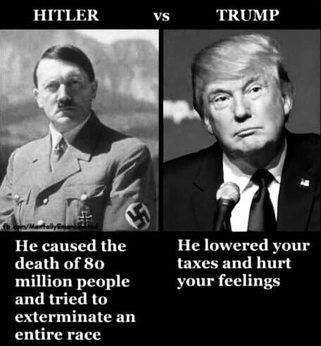 compare and contrast - hitler vs trump.jpg