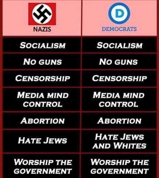 compare and contrast - nazis and dems.jpg