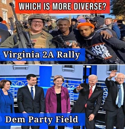 compare and contrast - virginia 2A vs dems.jpg